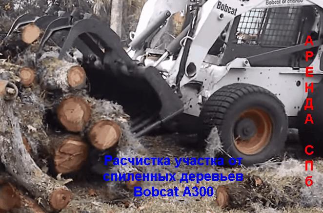 Расчистка участка от деревьев мини погрузчиком BOBCAT A300